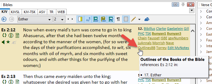 OutlinesBB link in the Bible Margin